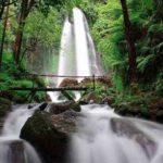Menelusuri Keindahan Air Terjun Parang Ijo di Lereng Gunung Lawu