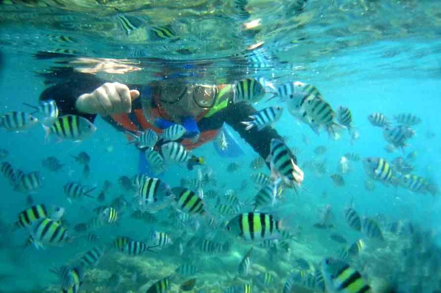 Ragam Aktifitas Wisata yang Seru Dilakukan di Pulau Tidung