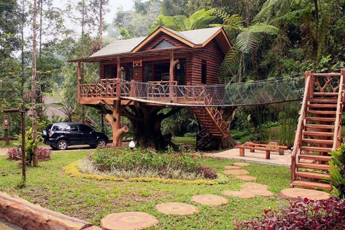 Wisata Rumah Pohon Taman Safari Indonesia
