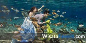 Destinasi Wisata yang Ngehits Banget untuk Snorkeling di Umbul Ponggok Klaten